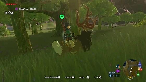 ゼルダの伝説・鹿